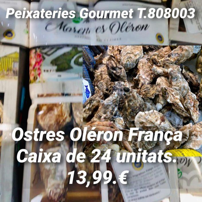 Oferta d'Ostres La Fine de Claire | Ostres de Marennes Oléron a 13,99 € a Peixateries Gourmet Andorra fins a esgotar existencies