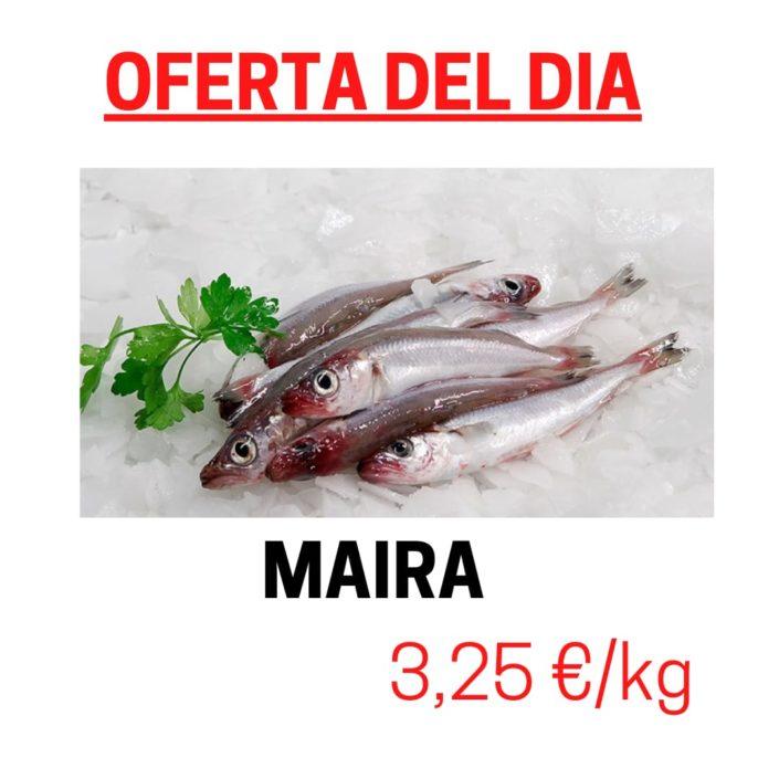 Avui dijous 11 de març del 2021 tenim d'oferta especial MAIRES. La característica més important per definir aquest peix és el baix contingut de greix que tenen.