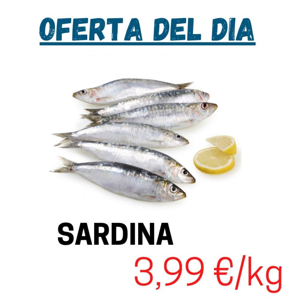OFERTA DE SARDINES FRESQUES A PREU ESPECIAL