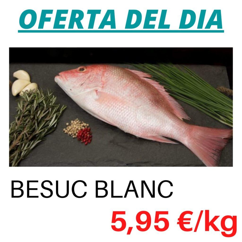 Peixateries Gourmet Andorra ofertes de peix del dimecres 19 de maig – Oferta de Besuc Blanc