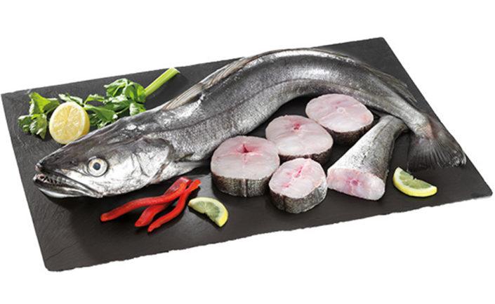 """El lluç gallec de palangre que venem a Peixateries Gourmet Andorra són lluços seleccionats. Dels millors, seleccionem els millors. Així ho indica l'etiquetatge dels lluços que comprem cada dia. Mètode de pesca: Palangre (Ham) . El lluç de palangre és un peix blanc amb un contingut gras i calòric baix. Aporta 65 calories i menys de 2 grams de greix per cada 100 grams de lluç ingerim. És ric en proteïnes completes i posseeix diferents vitamines i minerals que són beneficioses per a la nostra salut. Com cuinar el lluç gallec de palangre? El lluç gallec té infinitat d'exquisides receptes. Unes d'elles simples i delicioses serien a la romana (amb farina i ou), al """"pil pil"""", en salsa verda, al forn amb patata i ceba, a la planxa, en sarsuela juntament amb unes rodanxetes de rap i orada, a la donostiarra, a """"l'estil d'Orio"""", etc."""