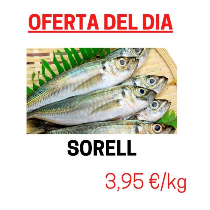 Avui dimecres tenim en oferta el Sorell, un peix blau per excel·lència amb les seves qualitats i molt bo per a la salut.