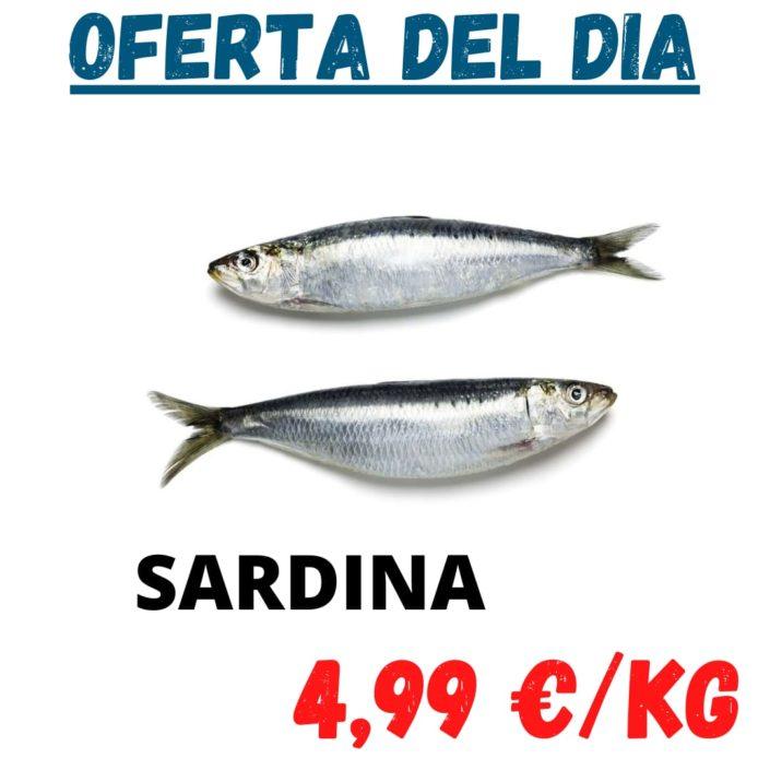Avui dimarts Sardines a Peixateries Gourmet Andorra
