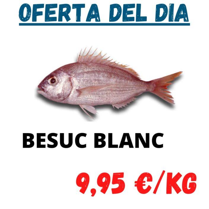 Avui dimarts tenim oferta especial de lluç de palangre i besuc blanc la millor qualitat al millor preu en peix fresc