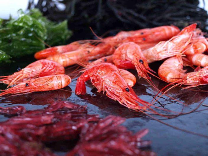 Camaronesprocedentes de las aguas del atlántico norte. Los camarones son cocidos a bordo lo que mantiene unos parámetros de sabor muy buenos.